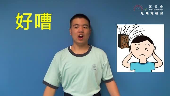 屯曦電視台—手語介紹